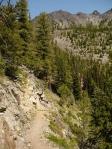 Paysayten Trail, WA