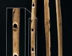 Stone Age Flute