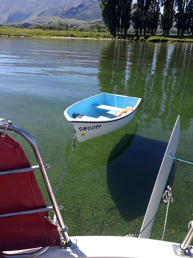 Damper Bay, Paddock and Glendu Bay